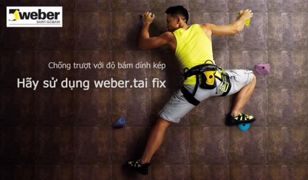 keo-dan-gach-weber.tai-fix